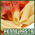 Penne Pasta: